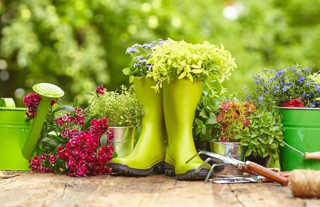 jardin-printemps